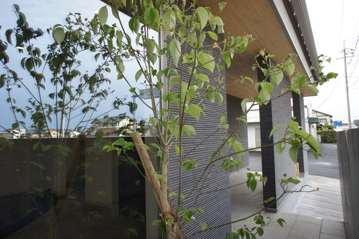 A.house(湯梨浜町)